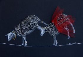Le cirque Moutoni