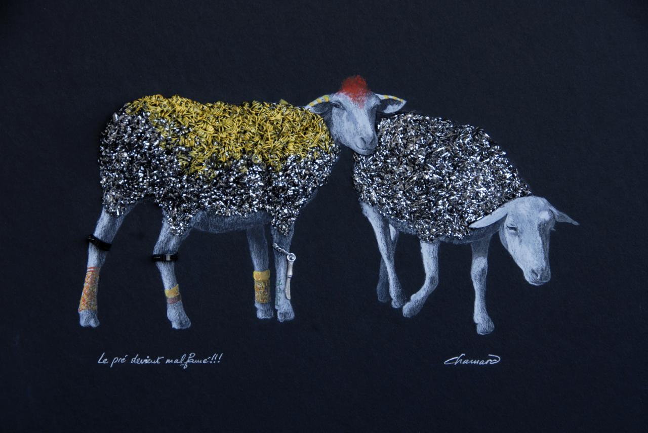 Punk mouton
