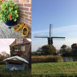 Campagne hollandaise